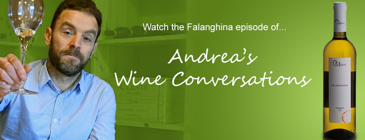 Andrea's wine conversations: Falanghina | The Italian Abroad Wine Blog