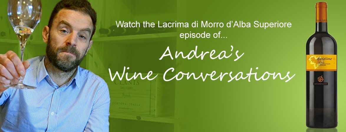 Andrea's wine conversations: Lacrima di Morro D'Alba Superiore | The Italian Abroad Wine Blog