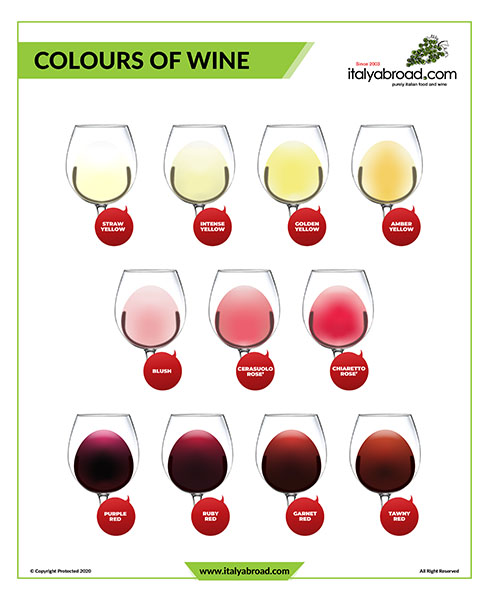 Colours of Wine, Italyabroad.com