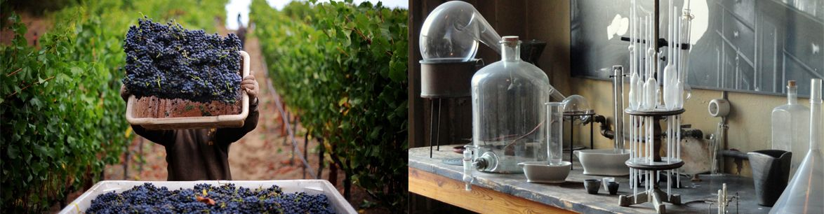 How to make rubbish wine taste good, is this something new?