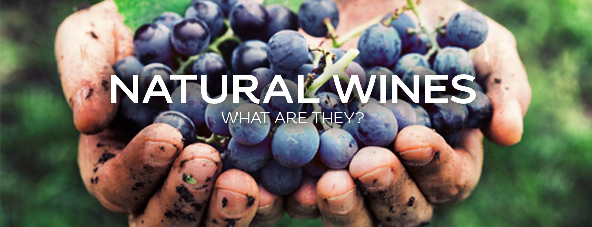 Natural wines, what are they?